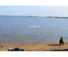 Турбаза «Димитрово» (Димитровское водохранилище)