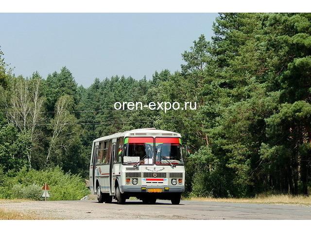 Новое расписание дачных маршрутов в Воронеже на 2021 год - 1