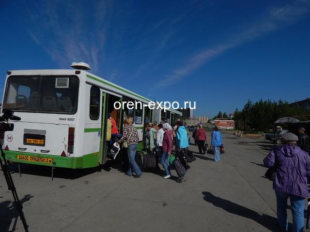 Новое расписание садовых маршрутов в Челябинске в 2021 году - 1
