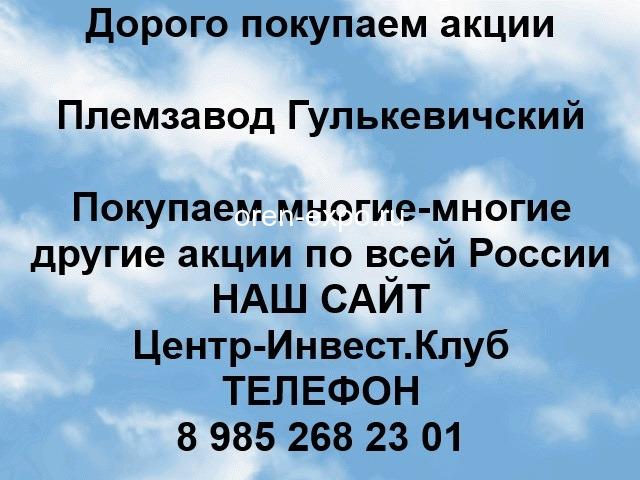Покупаем акции Племзавод Гулькевичский и любые другие акции по всей России - 1