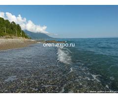 """Отдых в частном секторе Абхазии """"Гребешок"""" - Изображение 2"""