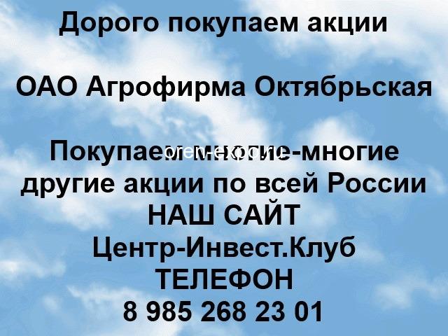 Покупаем акции ОАО Агрофирма Октябрьская - 1