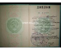 Учитель русского языка - Изображение 1