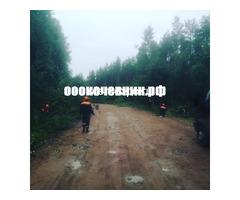 Расчистка заросших земель от кустов, деревьев, корней - Изображение 3
