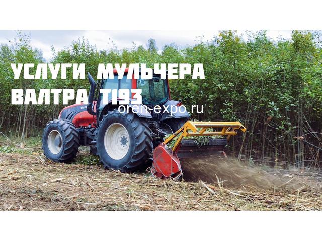 Расчистка заросших земель от кустов, деревьев, корней - 7