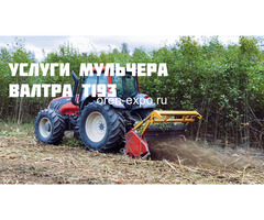 Расчистка заросших земель от кустов, деревьев, корней - Изображение 7