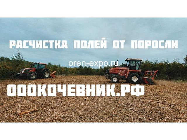 Расчистка заросших земель от кустов, деревьев, корней - 8