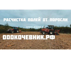 Расчистка заросших земель от кустов, деревьев, корней - Изображение 8
