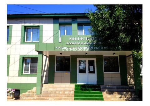Министерство лесного и охотничьего хозяйства Оренбургской области - телефоны, сайт, адрес