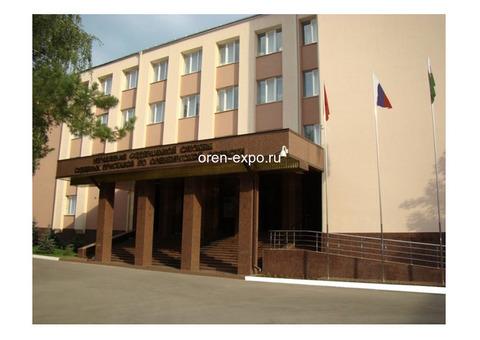 УФССП по Оренбургской области - телефоны, адреса, сайт