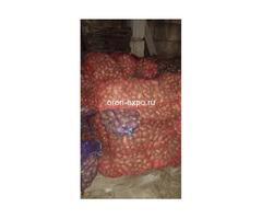 Продажа картофеля по низким ценам